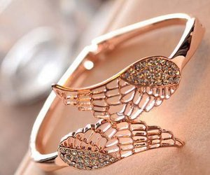 bracelet, ring, and wings image