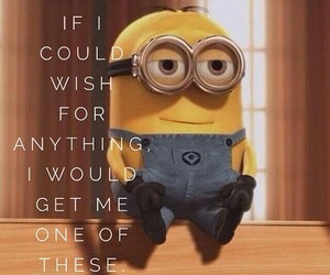 minions, cute, and wish image