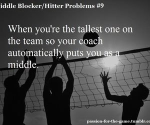 volley, volleyball, and middle hitter problems image