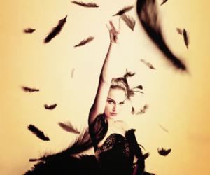 black swan, natalie portman, and black image