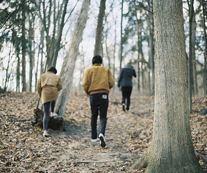 forest, boy, and friends image