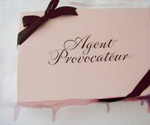 agent provocateur, underwear, and bag image