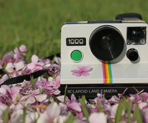 camera, colorful, and colour image