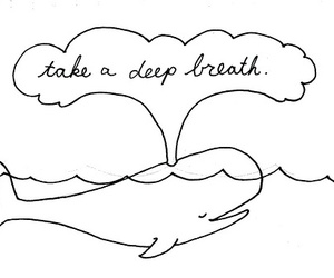 whale, breath, and quote image
