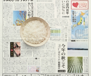 rice, japan, and japanese image