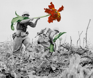 flowers, war, and peace image