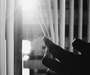 hand, window, and black and white image
