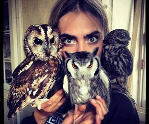owl, cara delevingne, and model image
