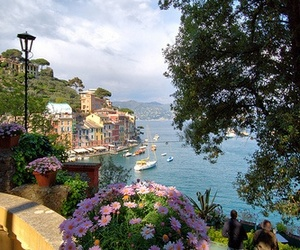 flowers, italy, and sea image