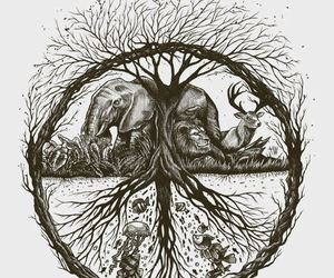 animals, peace, and balance image