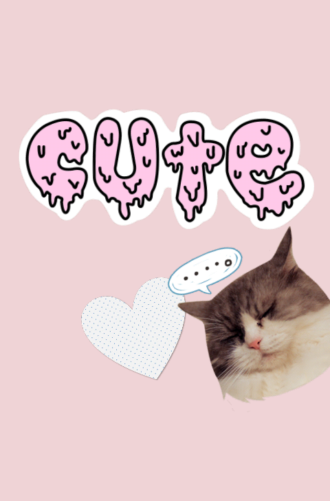 Image About Cute In Covers By Julia On We Heart It