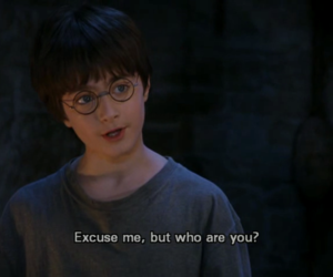 hp, who are you, and harry potter image