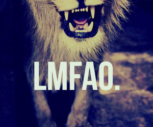 lmfao, lion, and hipster image