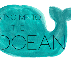 transparent, overlay, and ocean image