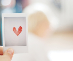 love, heart, and photo image