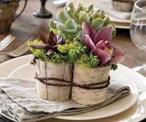 centerpiece, garden party, and orchids image