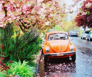 fusca, spring, and street image