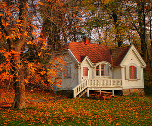 autumn, goteborg, and sweden image