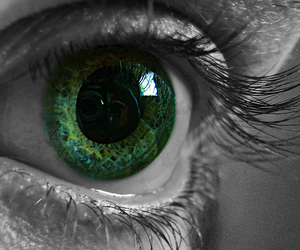 black and white, eye, and green image