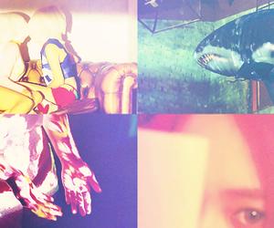 amber, victoria, and luna image