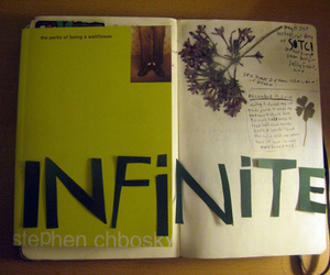 infinite and perks of being a wallflower image
