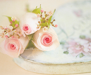 beautiful, flower, and shabby chic image