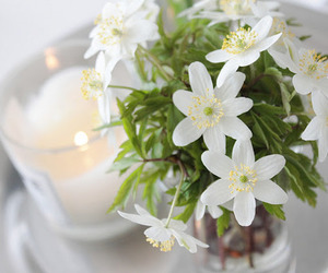 candle, flowers, and decor image