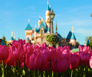 flowers, disney, and castle image