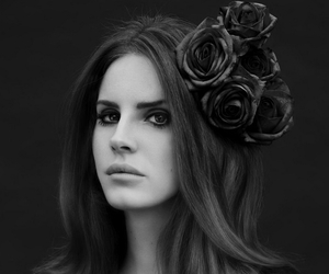 beauty, flower, and black image