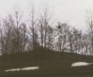 depression, gloomy, and nature image