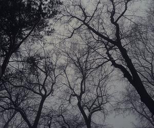 b&w, black&white, and dark image