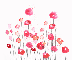 poppies in pink image
