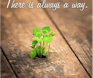 quotes, way, and life image