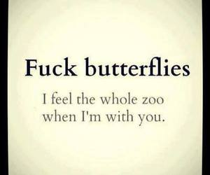tummy butterflies love and text quotes cute funny image