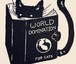 cat, book, and world image
