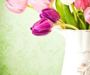 bowl, flowers, and butterfly image