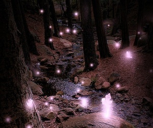 light, fairy, and forest image