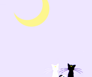 cat and sailor moon image