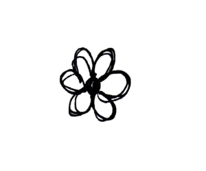overlay, transparent, and flower image