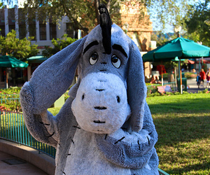 disney, cute, and eeyore image