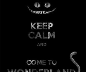 wonderland, keep calm, and cat image