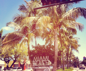 Miami, summer, and beach image
