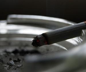 cigarrette and smoke image