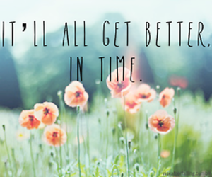 flowers, quote, and better image