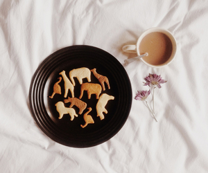 animals, coffee, and Cookies image