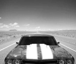 b&w, car, and ss image