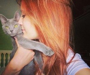 animal, eyes, and feline image