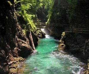 nature and water image