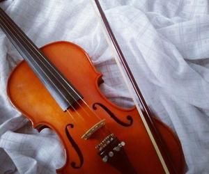violin, violino, and instagram image
