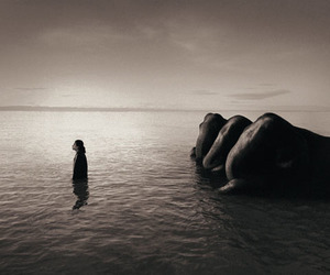 Gregory Colbert, Ashes and Snow, and zenitude image